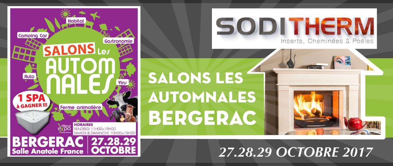 Soditherm cheminee insert po les bois et granul s - Salon de the bergerac ...